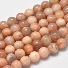 Round Natural Sunstone Beads Strands G-I176-09-8mm