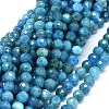 Natural Apatite Beads Strands G-O180-12-7mm-1