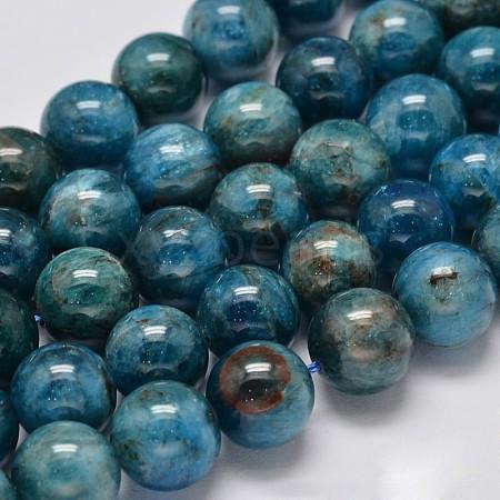 Natural Apatite Round Bead StrandsG-M304-14-10mm-1
